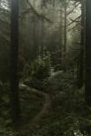 Gunung-Gunung di Indonesia yang Terkenal Sebagai Tempat Pesugihan Pailing mistis