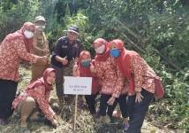 Sambut Hari Jadi ke-6, KPU Pangandaran Gelar Bakti Sosial Tanam 500 Pohon di Desa Selasari