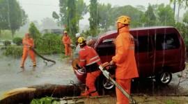 Angkutan Umum di Banjar Ringsek Tertimpa Pohon Tumbang