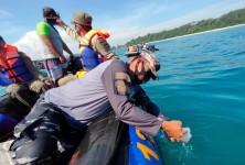 Satpolair Polres Ciamis Ikut Serta Lepasliarkan Ribuan Benih Bening Lobster di Perairan Pangandaran