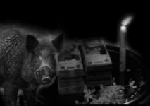 Misteri Pesugihan Babi Ngepet, dan Asal -Usul Pencari Kekayaan Saat Kepepet