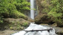 Wisata Pangandaran, Curug Jambe Anom Pemandangan Indah dan Eksotis