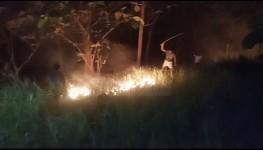 Tiga Hektare Lahan Pohon Jati Milik Warga di Pangandaran Terbakar