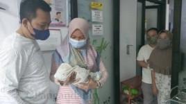 Ingin Adopsi Bayi yang Dibuang di Masjid, Begini Kata Kapolsek Kalipucang