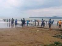 Vespicula Depressifrons Jenis Ikan yang Berbahaya di Pantai Pangandaran