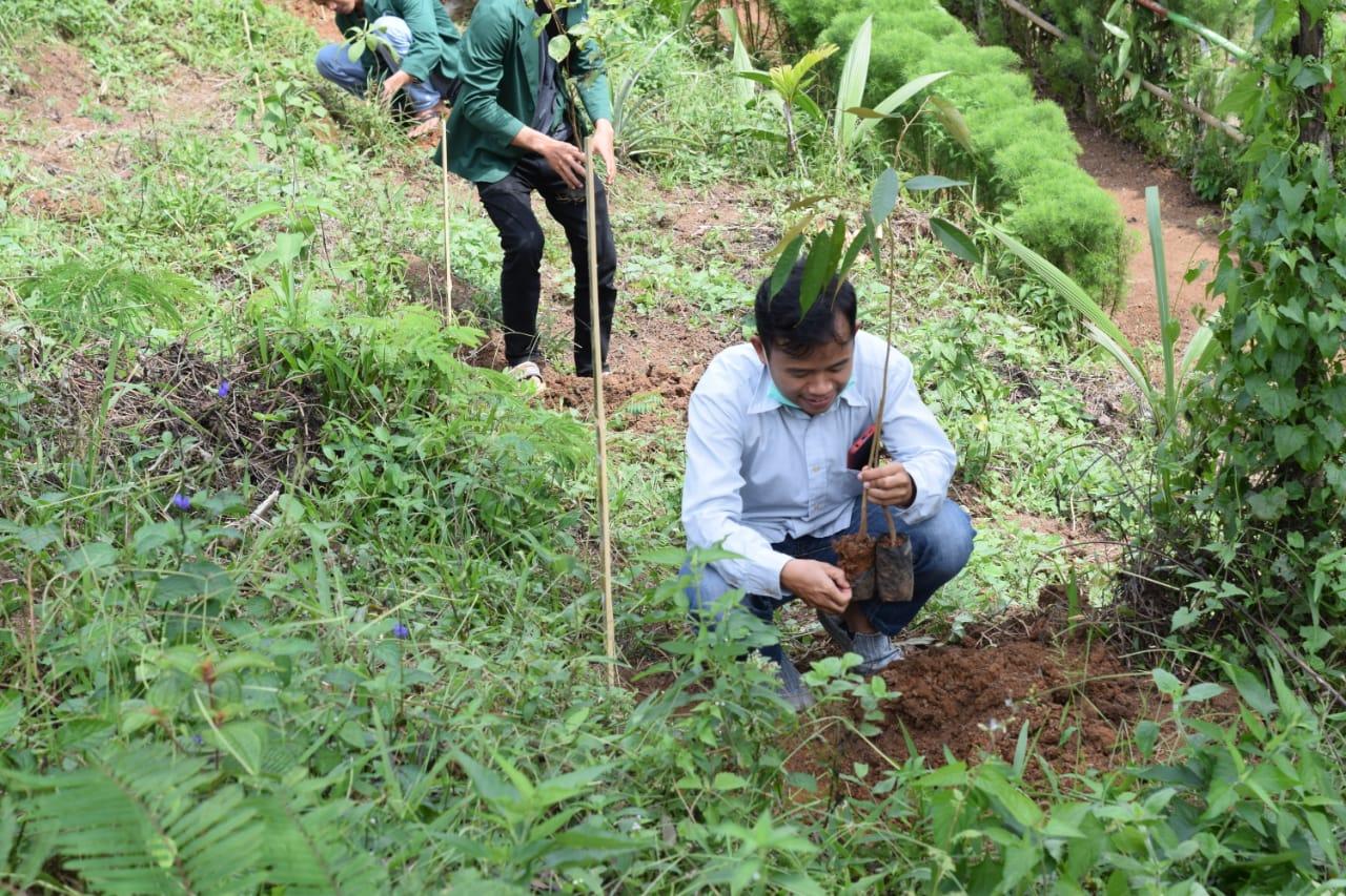 Pengelola Objek Wisata Susukan Jero Hills Tanam Ratusan Pohon Dalam Rangka Memperingati Anniversary Ke-1
