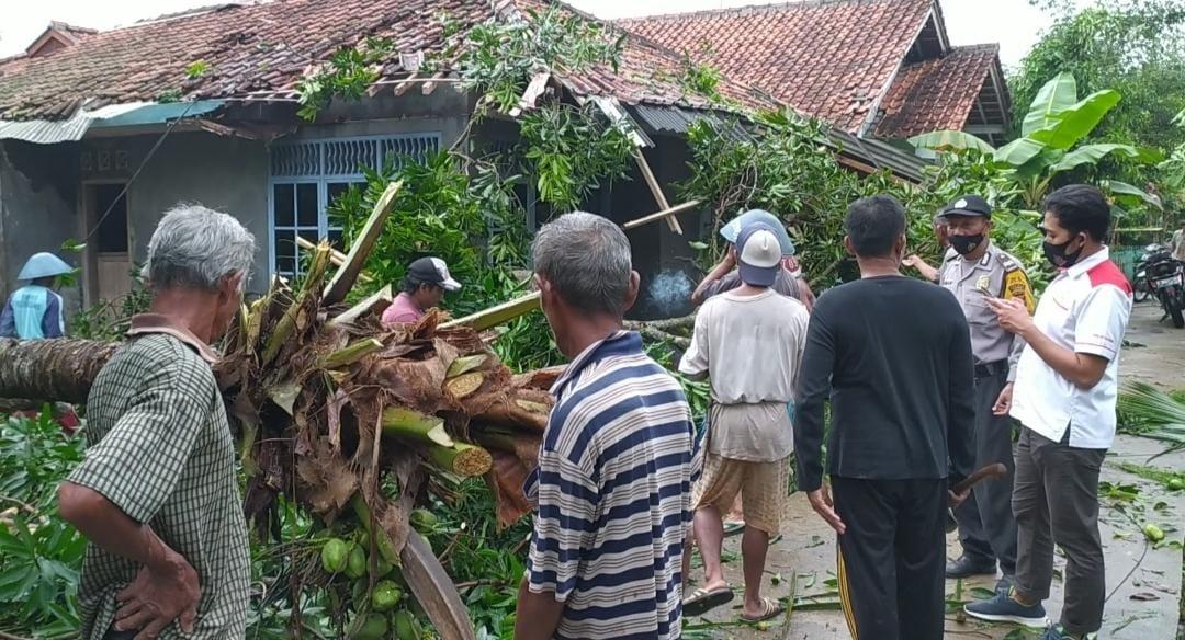 Lima Rumah di Pangandaran Tertimpa Pohon Tumbang Saat Diterjang Angin