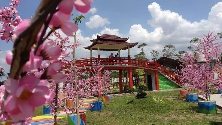 6 Wisata Ala Korea di Indonesia yang Akan Membawamu Ke Negeri Gingseng